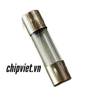102423 Cau Chi 5x20mm 1a Pt 1